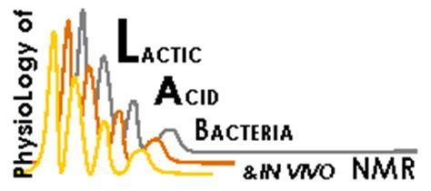 Lactic Acid Production Using Sweet Potato Processing